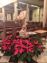 Christmas pointsettias surround one of the Cathedral